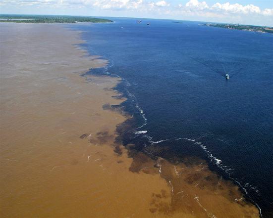Imagem: www.fmc.am.gov.br