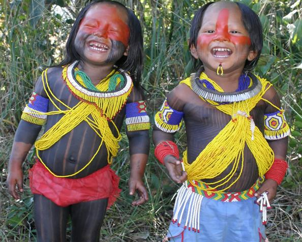 Notícias sobre a Amazônia I