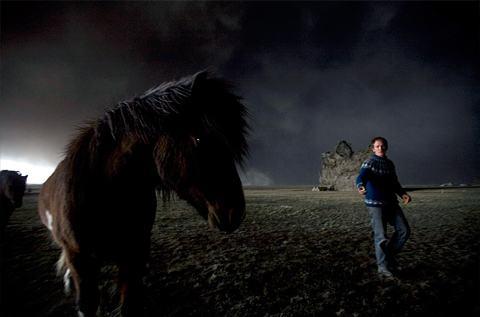 Eyjafjallajokull-cavalo