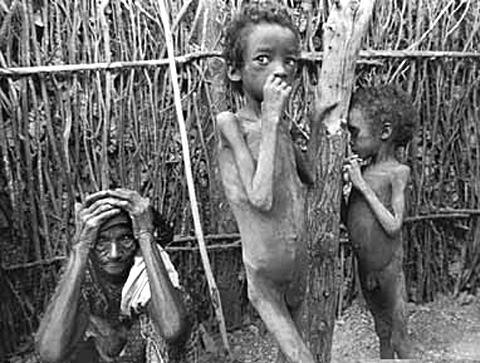 925 milhões de pessoas passam fome no mundo