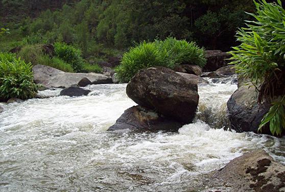reserva-natural-rio-das-lontras-5