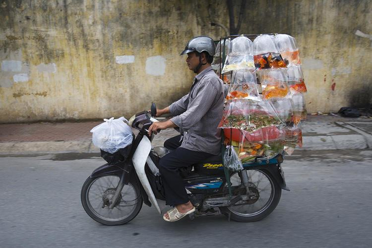 bikes-of-burden-hans-kemp-no-vietna-14