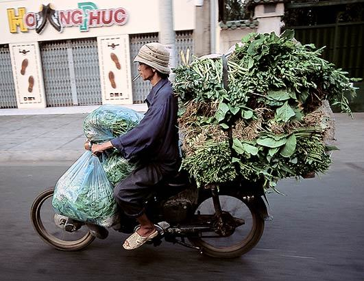 bikes-of-burden-hans-kemp-no-vietna-19