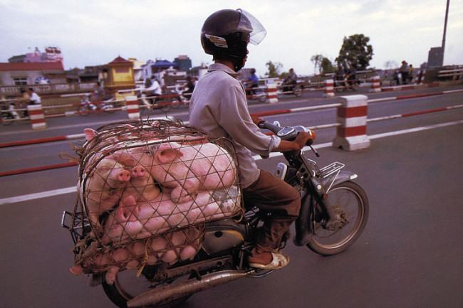 bikes-of-burden-hans-kemp-no-vietna-4