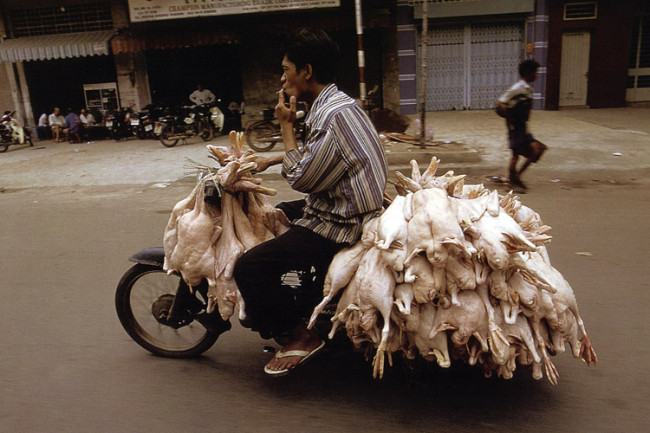bikes-of-burden-hans-kemp-no-vietna