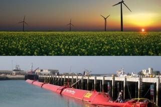 Cursos online gratuitos sobre energias renováveis