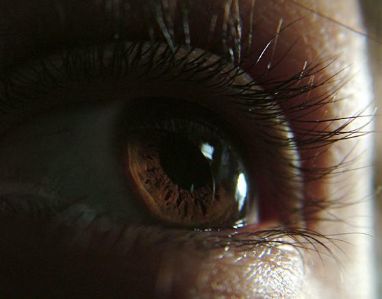 olhar-cinco-sentidos