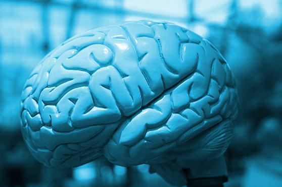 dicas-para-estimular-a-mente-e-saude-do-cerebro