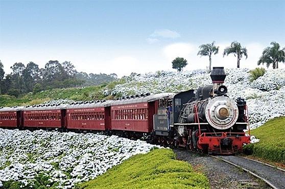 viagens-de-trem-doVinho-Bento-Goncalves-Garibaldi-Carlos-Barbosa