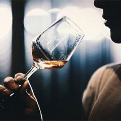 8 passos para se tornar expert em vinhos