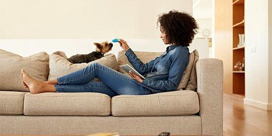 Criando o seu pet em apartamento: dicas e deveres