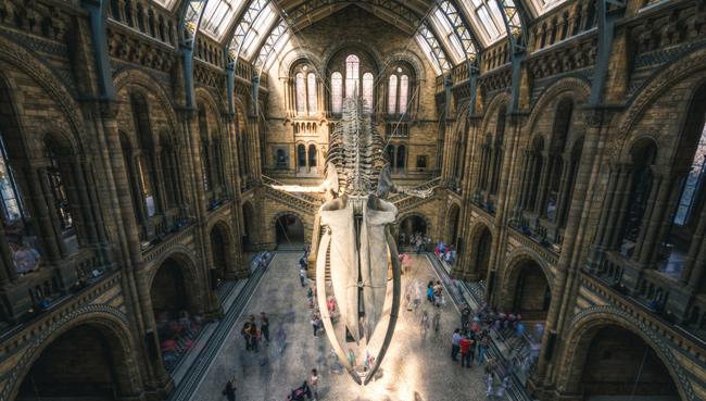 """Povos nativos pedem que museus europeus """"devolvam"""" seus ancestrais"""